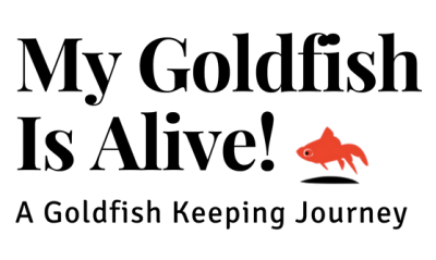 My Goldfish Is Alive! Logo